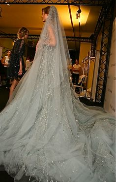 This is a side view of my dream Elie Saab wedding dress