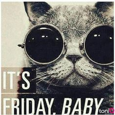 The most funny, and good Friday Quotes and Sayings with pictures and images. Good Morning and Friday night Friday Quotes on movies and life with images. Happy Weekend Quotes, Good Morning Quotes, Funny Morning, Friday Quotes Humor, Funny Quotes, Memes Humor, Funny Humor, Friday Sayings, Tgif Funny