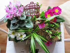 Domácí poklady: Jaro se probouzí