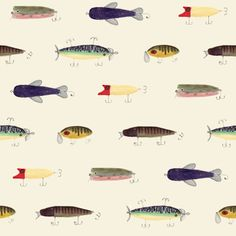 Natural History Illustrations by Jessie Burch - Pattern Observer. Click to see more. Fish patterns, fly fishing illustrations, pattern design, surface pattern design, fish illustrations Fish Illustration, Botanical Illustration, Pattern Designs, Surface Pattern Design, Natural History, Natural World, Fish Patterns, Animal Sketches, Free Illustrations