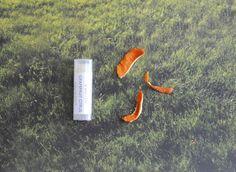 #Grapefruit #Citrus Tangerine Lip Balm - Shea Butter, #Beeswax, Vitamin E, All #Natural