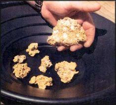 Jamestown California Gold Panning