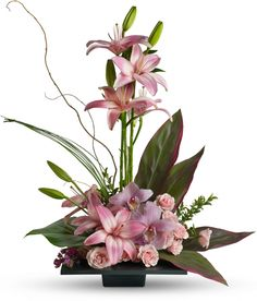 Imagination Blooms with Orchids Save 25% on this bouquet and many others with coupon code TFMDAYOK1B2 Offer expires 05/14/2012.