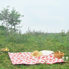 picknick kleed | urbans and indians