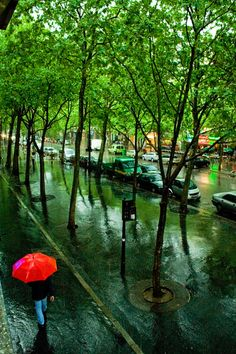 ive heard nothing smells sweeter than paris in the rain...who will go with me?