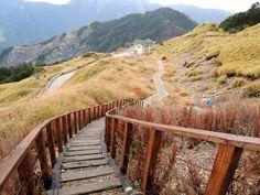 2012.12.26 -Hehuan Mountain 合歡山