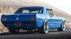 Mustang, Maier Racing Old Blue