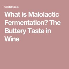 What is Malolactic Fermentation? The Buttery Taste in Wine