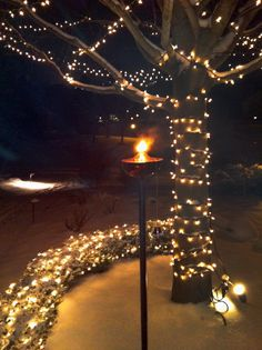 Look at how great this tiki torch looks out among the snow and holiday lights! The Bordeaux is available at www.buytikitorches.com
