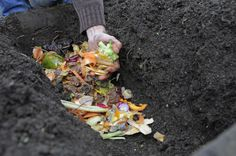 Find out how to bury kitchen waste to make a composting trench, boosting vegetable crops next year, with this guide from BBC Gardeners' World Magazine.