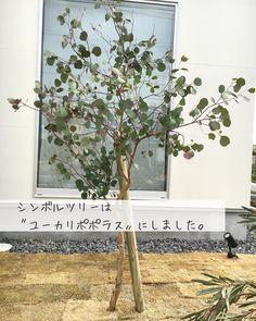 Ladder Decor, My House, Symbols, Exterior, Architecture, Plants, Natural Interior, Home Decor, Style