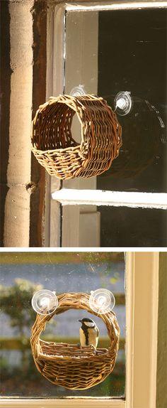 Wicker window bird feeder - As featured in book: Willow Craft 10 Bird Feeder Projects Bird House Feeder, Diy Bird Feeder, Window Bird Feeders, Paper Weaving, Weaving Art, Willow Weaving, Basket Weaving, Fun Crafts, Diy And Crafts
