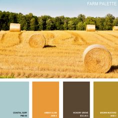 11 Beautiful Color Palettes Inspired ByNature — Farm Palette (all paint is Behr) [Amber Glow???]