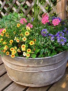 outdoor flower containers | This galvanized old pot contains four types of heat tolerant annuals ...