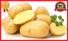 200Pcs Potato Seeds Empress Vegetable seeds from Ukraine - Early - Fresh & Rare #PotatoSeeds