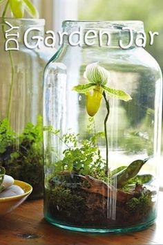 DIY garden jars