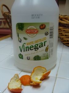 Homemade Citrus Cleaner-- vinegar and oranges to clean  mirrors, windows, floors, wooden chairs, counter