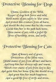 Image result for witchcraft friday blessings #walking