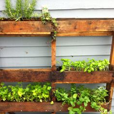 Herb garden for the deck, space saver