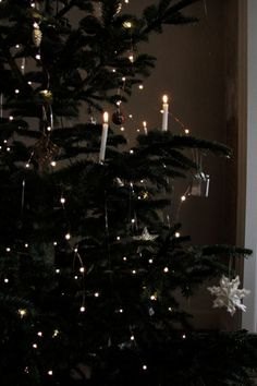 Looking for for inspiration for christmas wallpaper?Browse around this website for perfect Christmas inspiration.May the season bring you joy. Christmas Feeling, Little Christmas, Winter Christmas, Christmas Time, Black Christmas Trees, Diy Christmas Lights, Outdoor Christmas Decorations, Christmas Tree Ornaments, Christmas Aesthetic