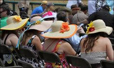 Hats for Black-Eyed Susan Day and Preakness Day. May 16th and 17th!! Get your tickets now! Call 877-206-8042