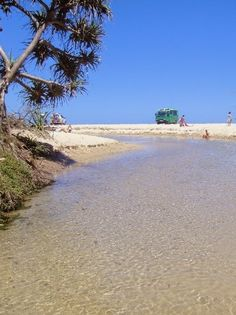 Eli Creek, Fraser Island, Australia -