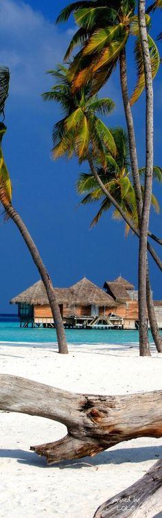Gili Lankanfushi, Maldives aquí estuve