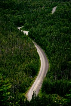 Winding Road in Gros Morne National Park, Newfoundland, Canada <3