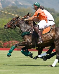 Estancia Villa Maria ( Buenos Aires, Argentina ) Guests can watch the local polo club train at the renowned G. Morris Equestrian Centre. #Jetsetter