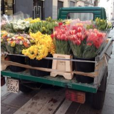 sometimes i think life would be better if i just opened up a flower shop. flower truck in Milan, Italy My Flower, Fresh Flowers, Beautiful Flowers, Bright Flowers, Flower Farm, Beautiful Things, Flower Truck, Flower Market, Flower Shops