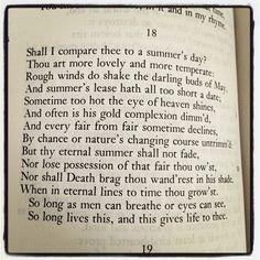 Shakespearean Sonnet - Fan Art   An Homage to William   Pinterest