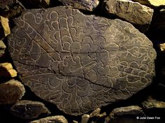 Almond Blossom and Prehistoric Art at Foz Côa, Portugal - by Julie Dawn Fox 13.01.2015 | As well as being blessed with some of the world's best examples of prehistoric art, the Côa region has a microclimate that makes it perfect for growing almonds. Photo: More modern rock art, Rua dos Namorados, Castelo Melhor, Penascoso, Foz Côa