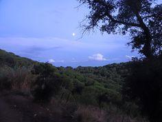 Desde los bosques de Sant Pol un atardecer con luna.