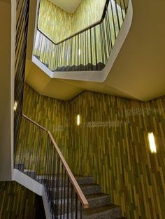 Patumbah Park Zürich Miller Maranta, Interior Architecture, Stairs, Interiors, Home Decor, Steam Room, Bunny, Architecture Interior Design, Stairway