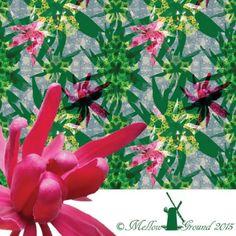 Kimberley Wilson | Make It In Design | Surface Pattern Design | Summer School 2015 | Eco Active Organic Decay | Intermediate Creative Brief