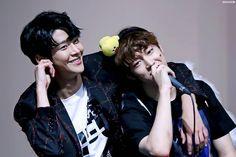 Dawon and Rowoon