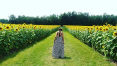 You Must Visit This Massive Sunflower Field In Ontario This Summer - Narcity
