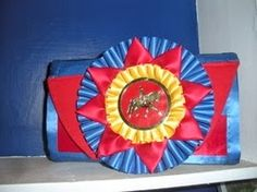5 DIY Ideas for Displaying Horse Show Ribbons | Savvy Horsewoman