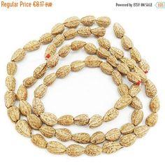 Pagsahingin Samen, braun, 1 Strang, 12mm, 35 Stück, seeds, seed beads, natural beads, brown beads, rainforest, oval beads, jewelry supplies