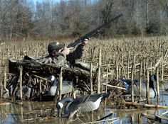 Avery Outdoors blind.  For more duck hunting info go to: http://go.epublish4me.com/ebook/ebook?id=10053749#/0