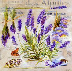 Claudiaroma: Rotas da lavanda na Provence