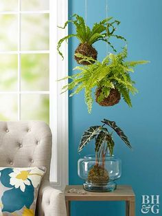Bring a dose of green to your space with this free-form hanging moss accent. We'll show you the steps to making kokedama and how to care for it, along with decor tips and everything you need to know about moss.