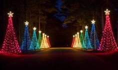 Callaway Gardens Christmas.21 Best Fantasy In Lights Images Callaway Gardens Fantasy