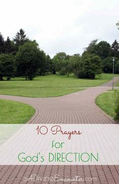 Where to turn. Which path to take. Knowing God's will comes from knowing God's Word. Are you looking for God's guidance? This thoughtful post offers 10 prayers for God's direction. Prayer For Guidance, Gods Guidance, Power Of Prayer, Faith Prayer, Guidance Quotes, Jesus Prayer, Prayer Quotes, Christ Quotes, Godly Quotes