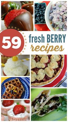 59 Fresh Berry Recipes: A huge list of recipes to put your fresh berries to good use! Includes desserts, drinks, breads, main dishes and more! #berry #recipes #drinks #dessert