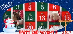 12/10/17 HAPPY 2nd ADVENT EVERYBODY! We're sooo much LOOKING forward to OPENING our calendar later on!! Mom keeps telling us we can't have ANY goodies BEFORE dinner WHY???? Duncan & Dexter on D&D by Inger Johanne :)