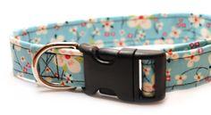 Retro Light Blue with Pink Cherry Blossoms Medium Dog Collar