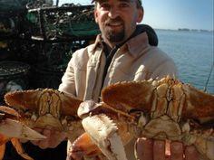 Annual Tides Wharf Crab Feed.  Bodega Bay, CA.  Annually in January.