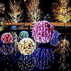 Instagram【hiro.n_n.smile】さんの写真をピンしています。 《☺︎ . おはようございます☺ . 今日も仕事だぁ…💦💦 ねむーい😱 . この前、グランフロントのところに花のような木みたいなのが…ってpostしてたやつ❣❣❣ . クリスマスのイルミネーションだったみたい♡ . #大阪 #グランフロント大阪 #イルミネーション #夜景 #写真好きな人と繋がりたい #写真撮ってる人と繋がりたい #ファインダー越しの私の世界 #お写んぽ #おさんぽカメラ #カメラ女子部 #japan #loves_nippon #japan_night_view #night #osaka #photo #smile》