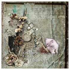 """Kit is called """"book of memories"""" by Manu Design Studio on pickleberrypop Memory Books, Kitten, Decorative Boxes, Passion, Scrapbook, In This Moment, Studio, Pets, Gallery"""